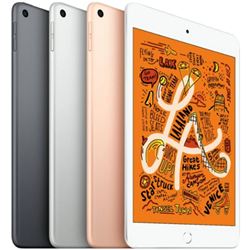 iPad Mini 2019 Wi-Fi 64 GB